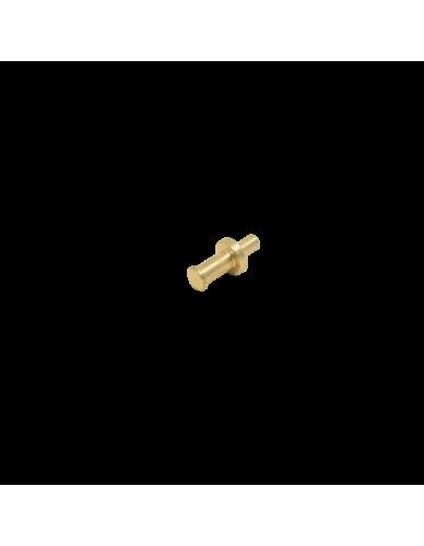 Perno valvola vapore Faema E61