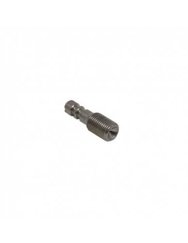 Astoria retention valve screw