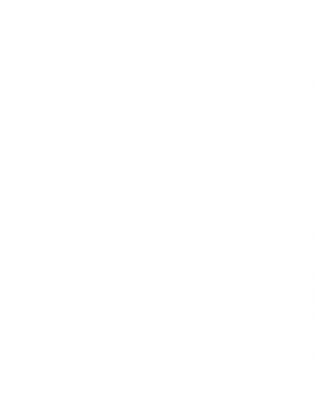 La Pavoni Europiccola schalter